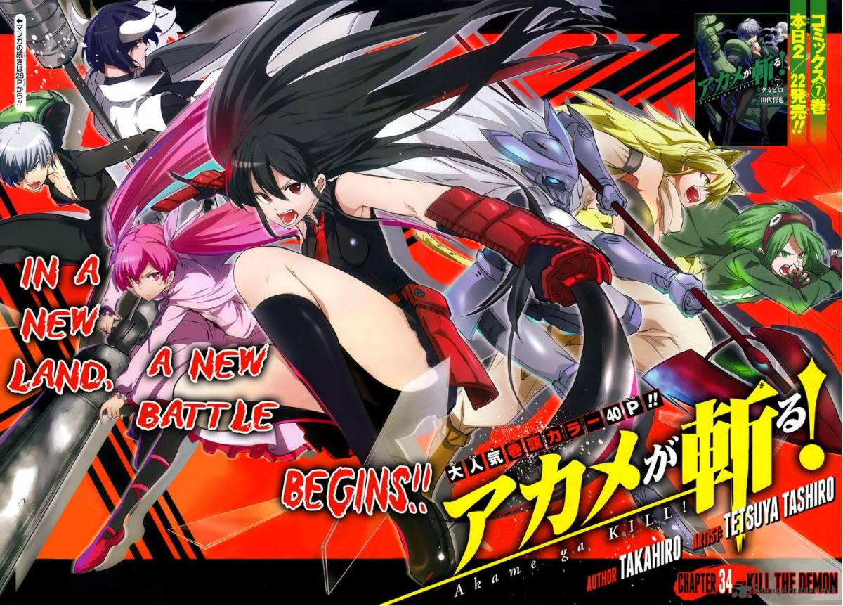 "10 Manga Like ""Akame ga Kill!"""