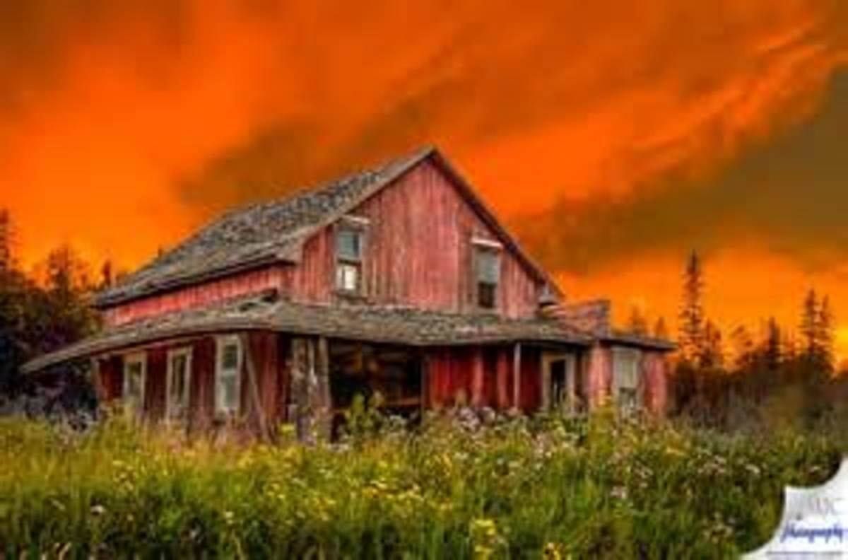 The abandoned old home place.