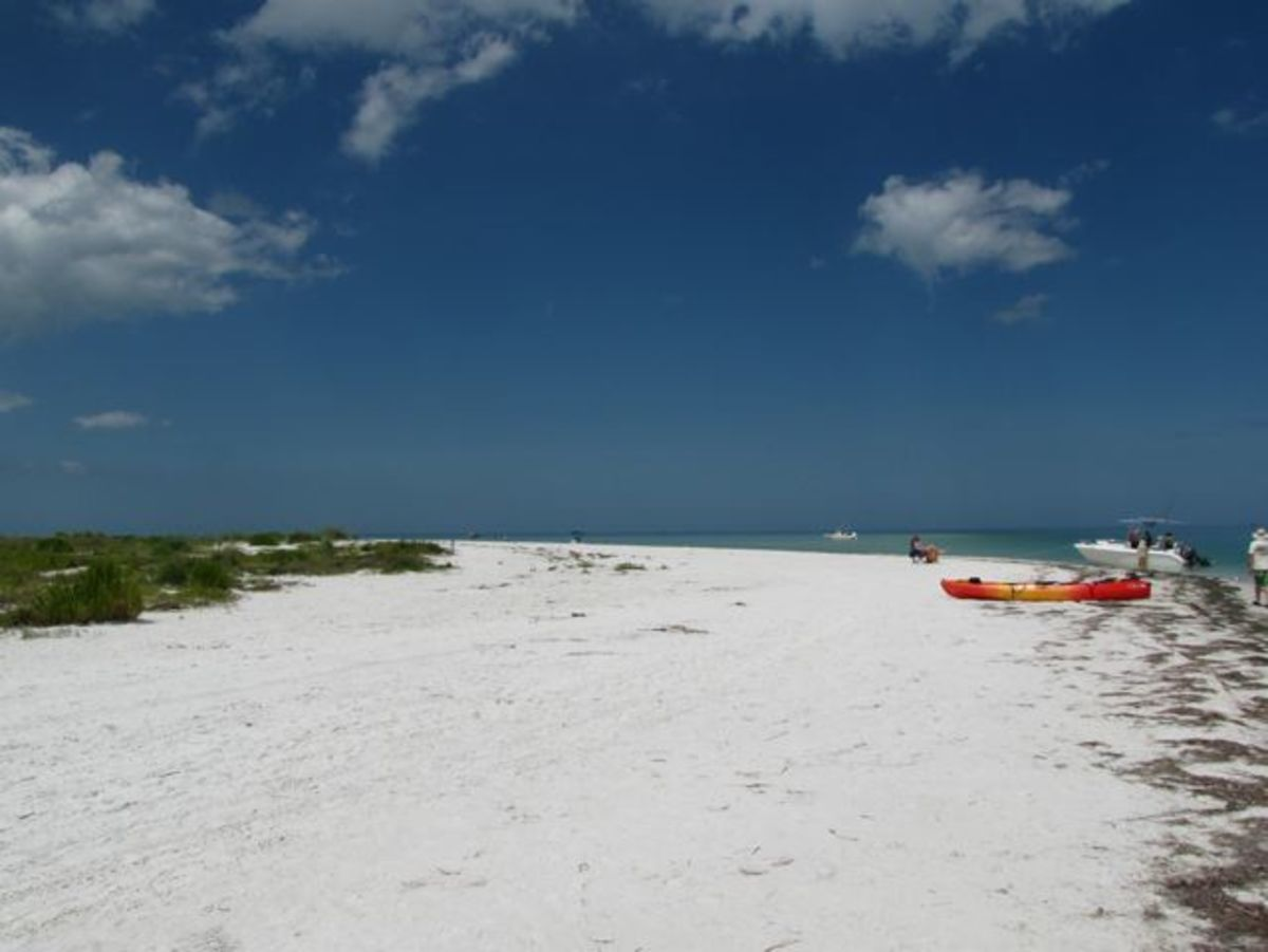 Florida Kayaking:  Honeymoon Island to Caladesi Island