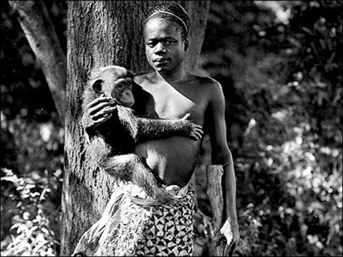 Zoo exhibit Ota Benga.