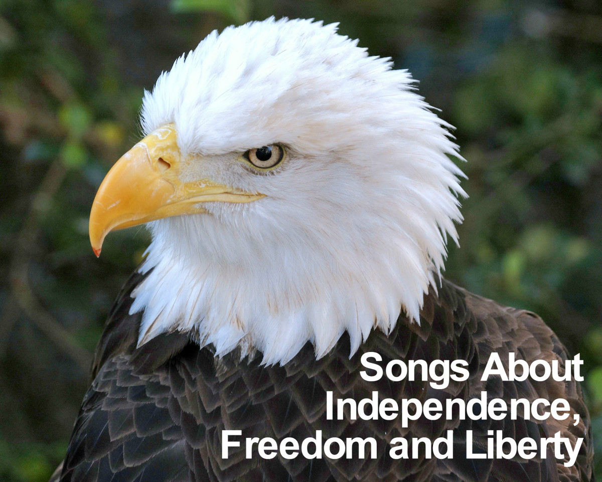 Make a playlist to display your American pride and celebrate your freedom, independence and the liberty that others have fought so bravely for.