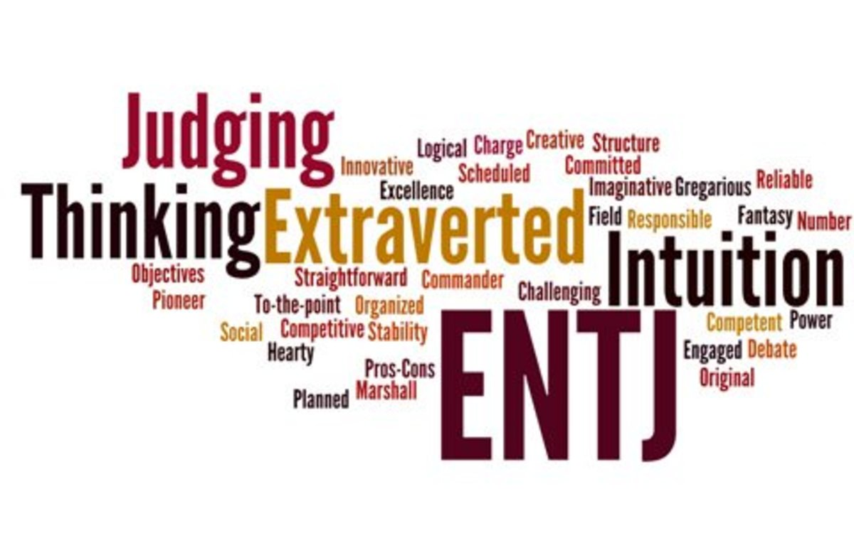 26 Struggles of ENTJs