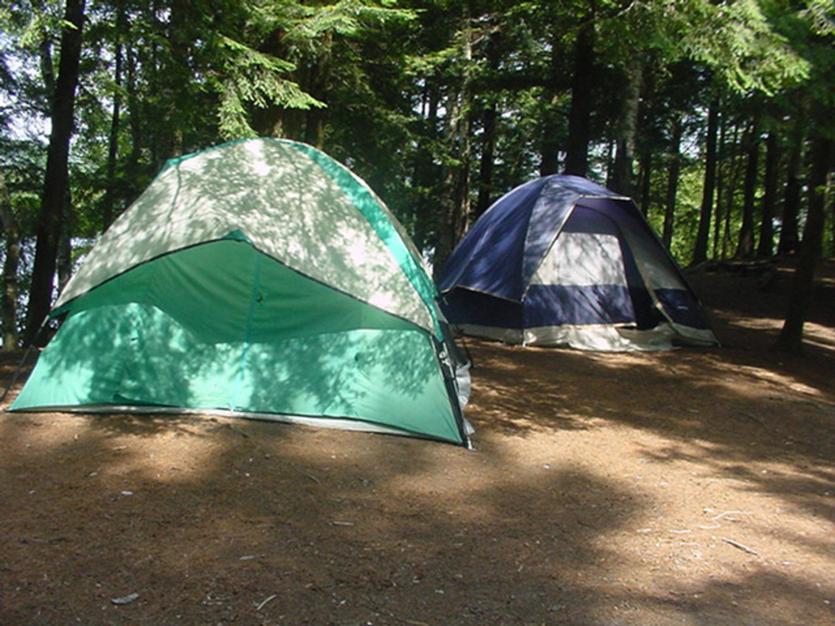 The History of Recreational Camping in the USA