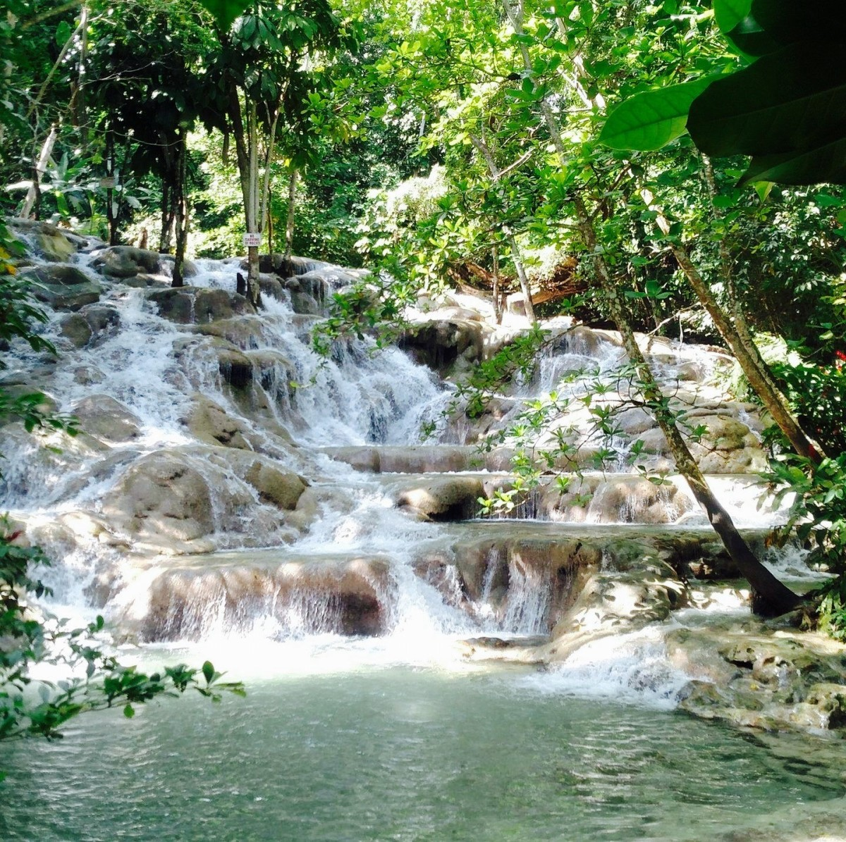 The captivating Dunn's River Falls is a must for visitors to Jamaica.