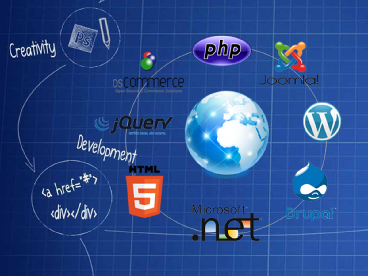 Know About Web Development, Programming Languages, and CMS