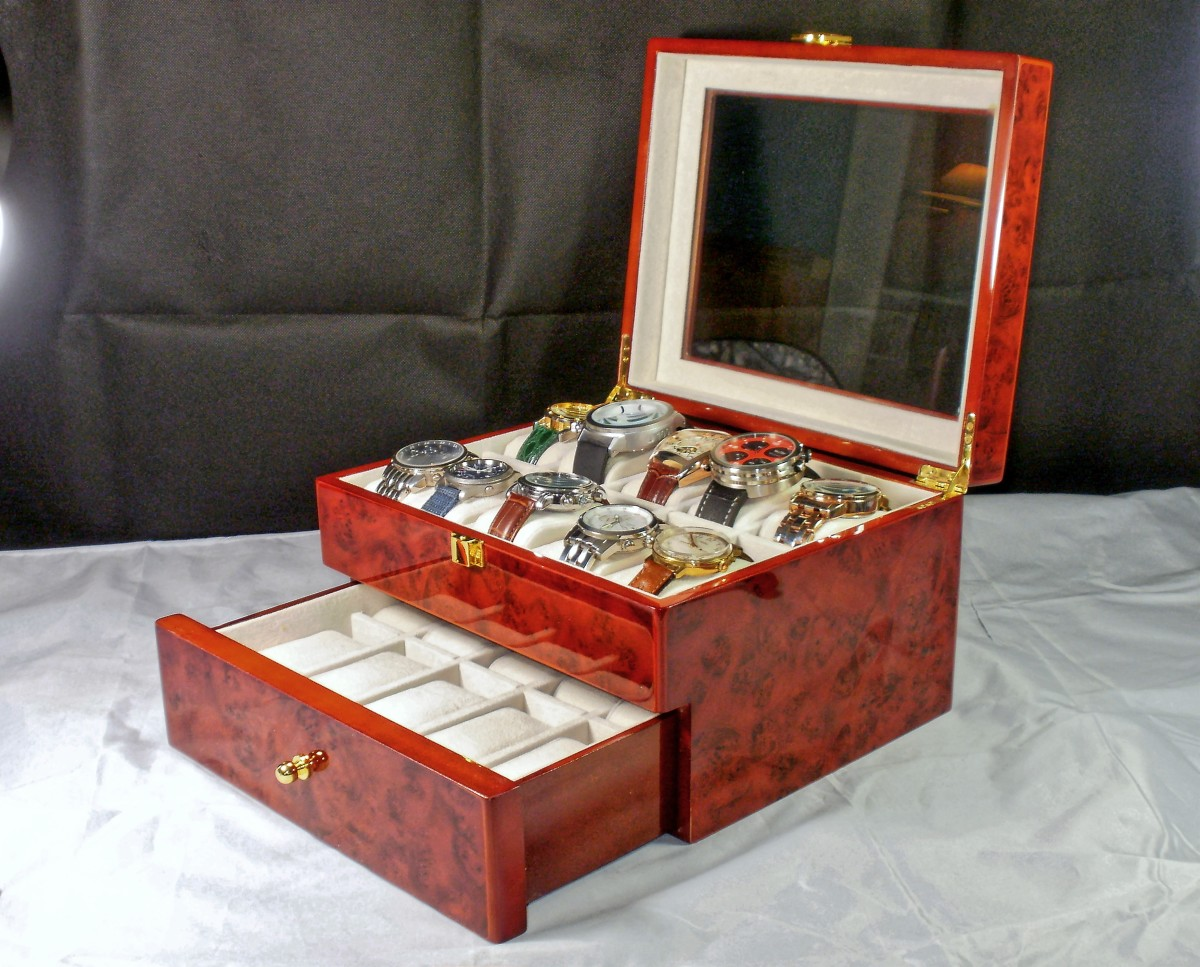 Review of the Tech Swiss TSAA31-577BUR Watch Display Case