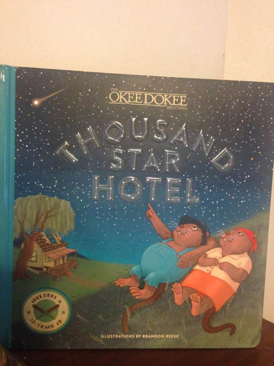 Thousand Star Hotel: A Picture Book That Teaches Lesson on Wants vs. Needs