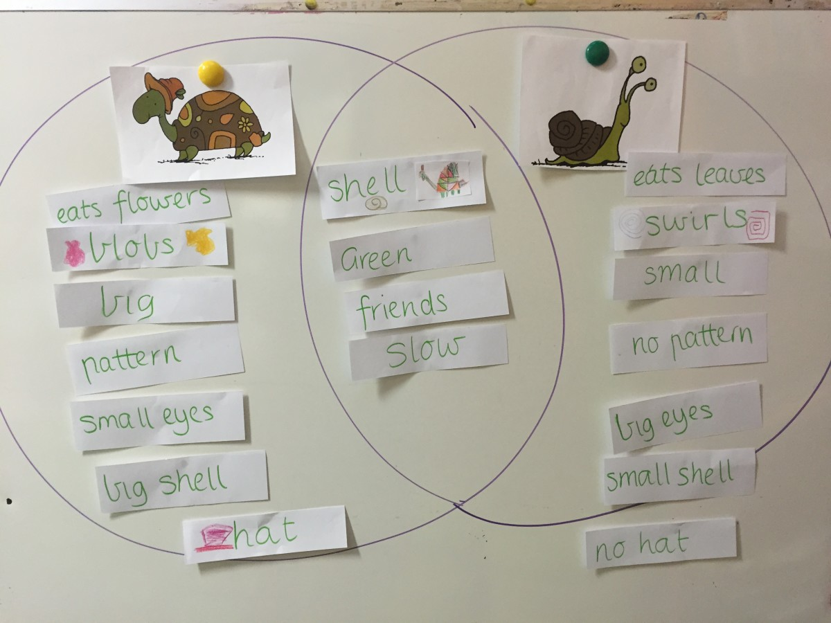 An interactive version in which students place the differences and similarities on a Venn diagram drawn on a posterboard.