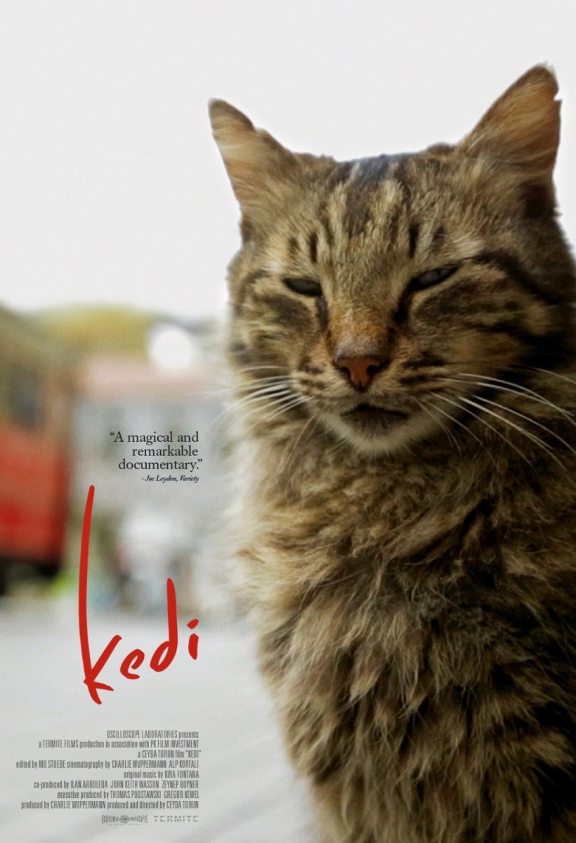 Kedi Review