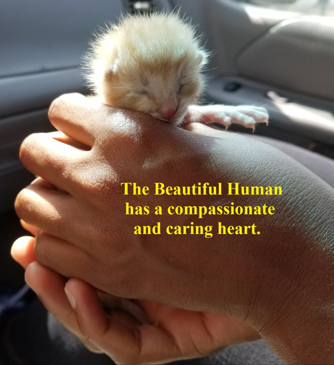 The Beautiful Human has a compassionate and caring heart.