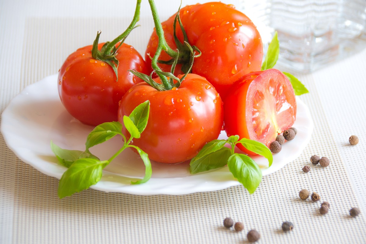 Tomatoes: Plant Facts, Interesting History, and Improved Flavor