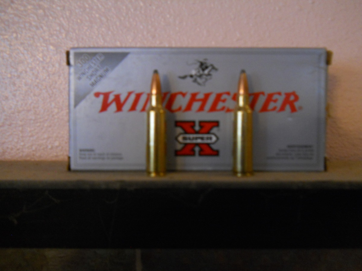 Ammunition Test:  Winchester Super X 180 Grain Power Point; .300 Winchester Short Mag