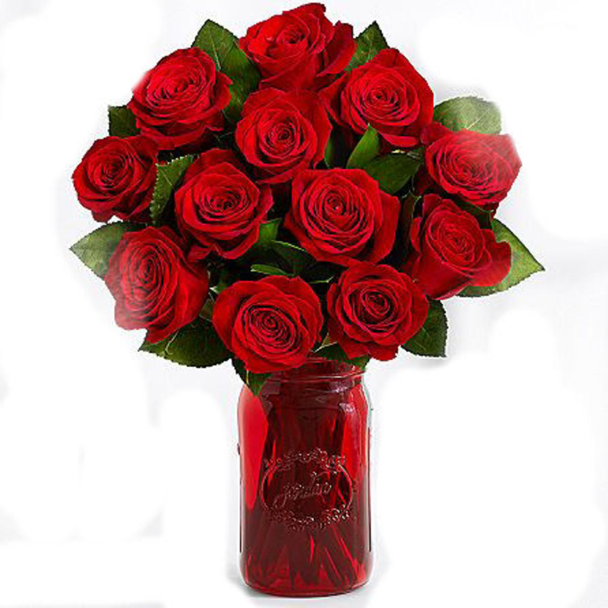 Valentine's Day Roses. . . What you should know