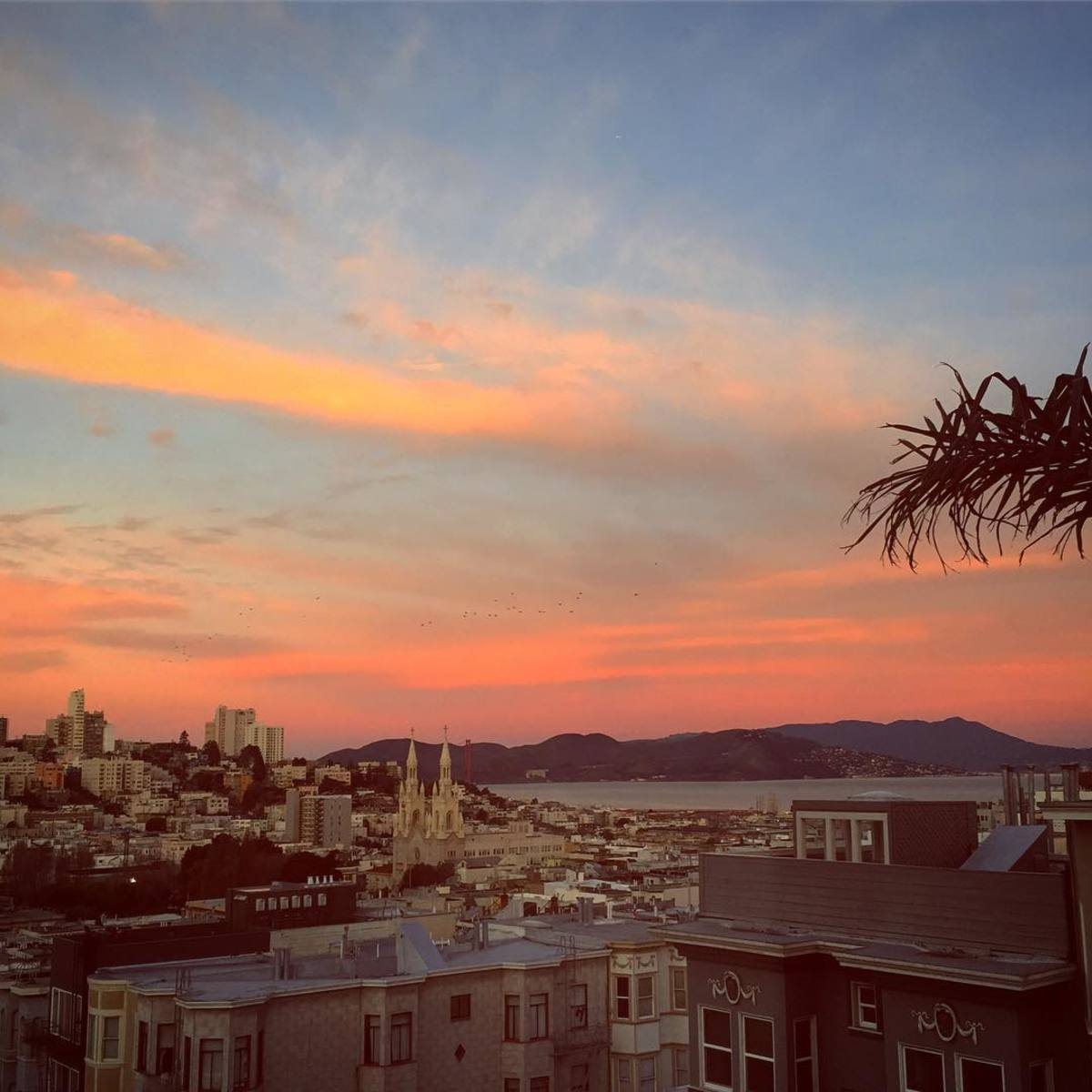 Top Things to Do in San Francisco's North Beach Neighborhood