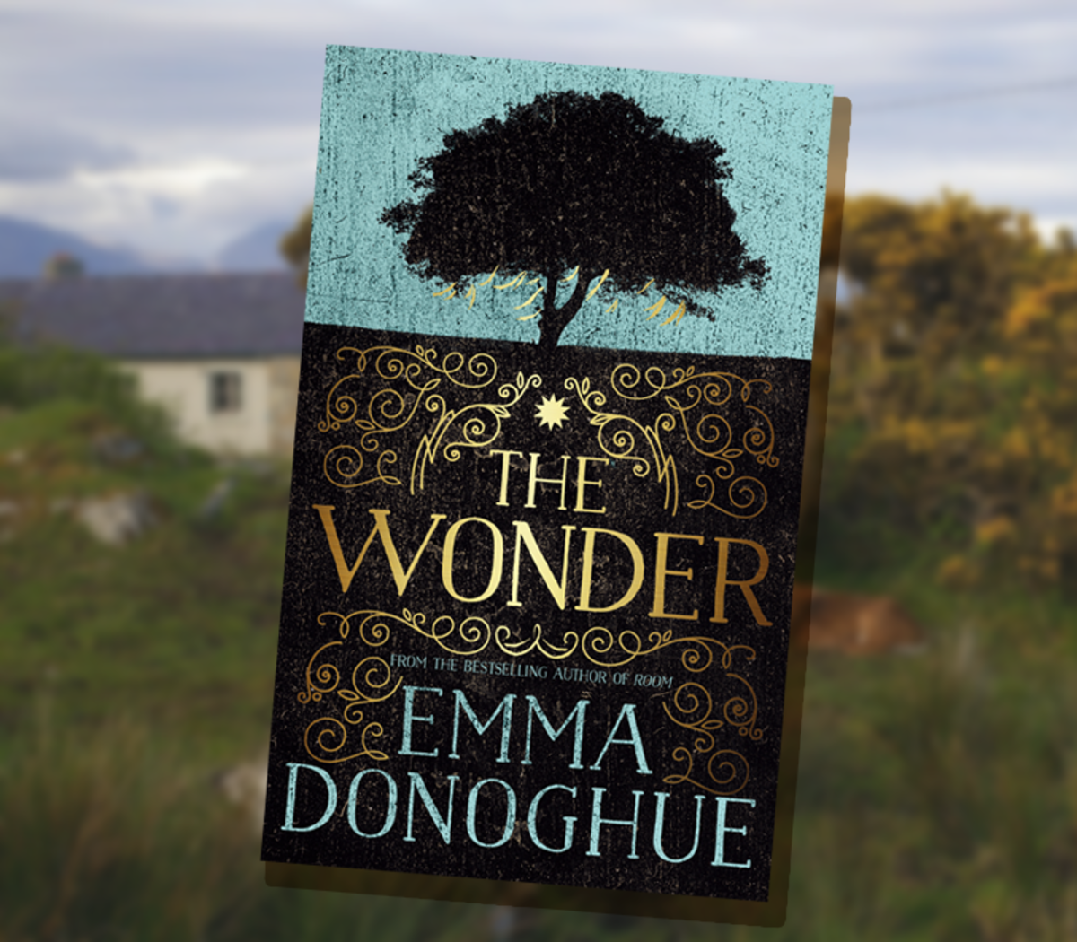 """""""The Wonder"""" Book Review"""