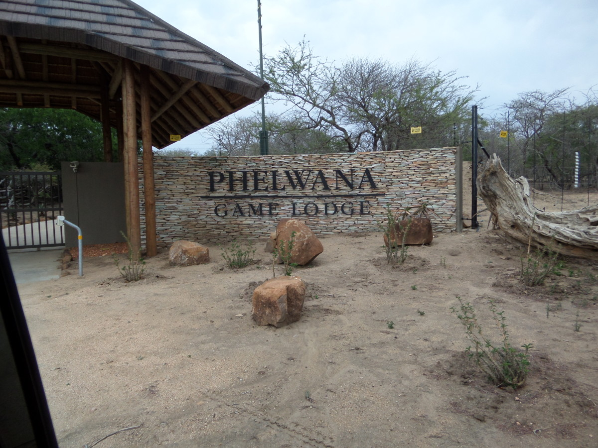 Review of Phelwana Game Lodge