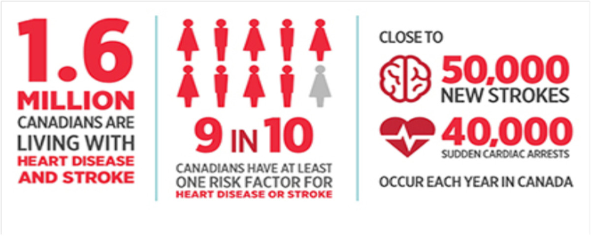 Heart and Stroke infograph