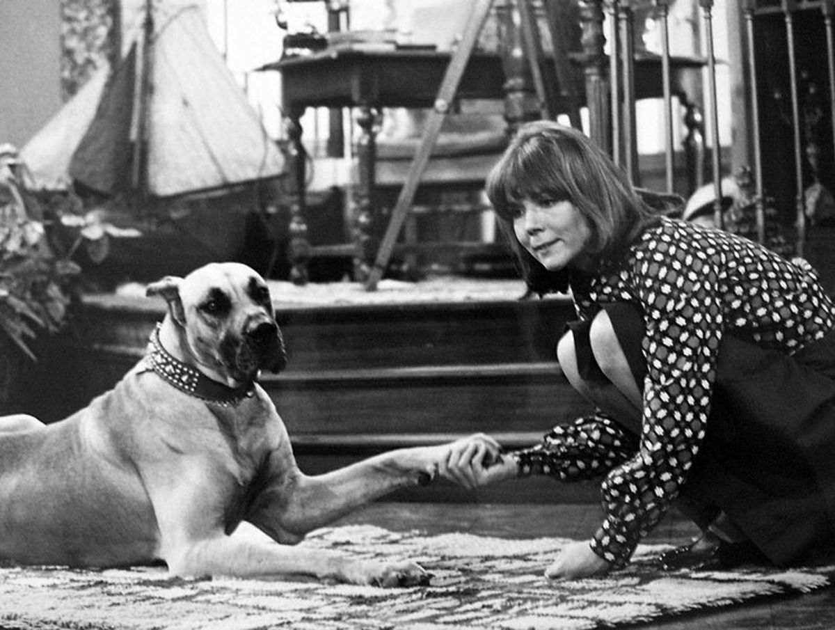 From the 1973 TV show Diana with her roommate Gulliver