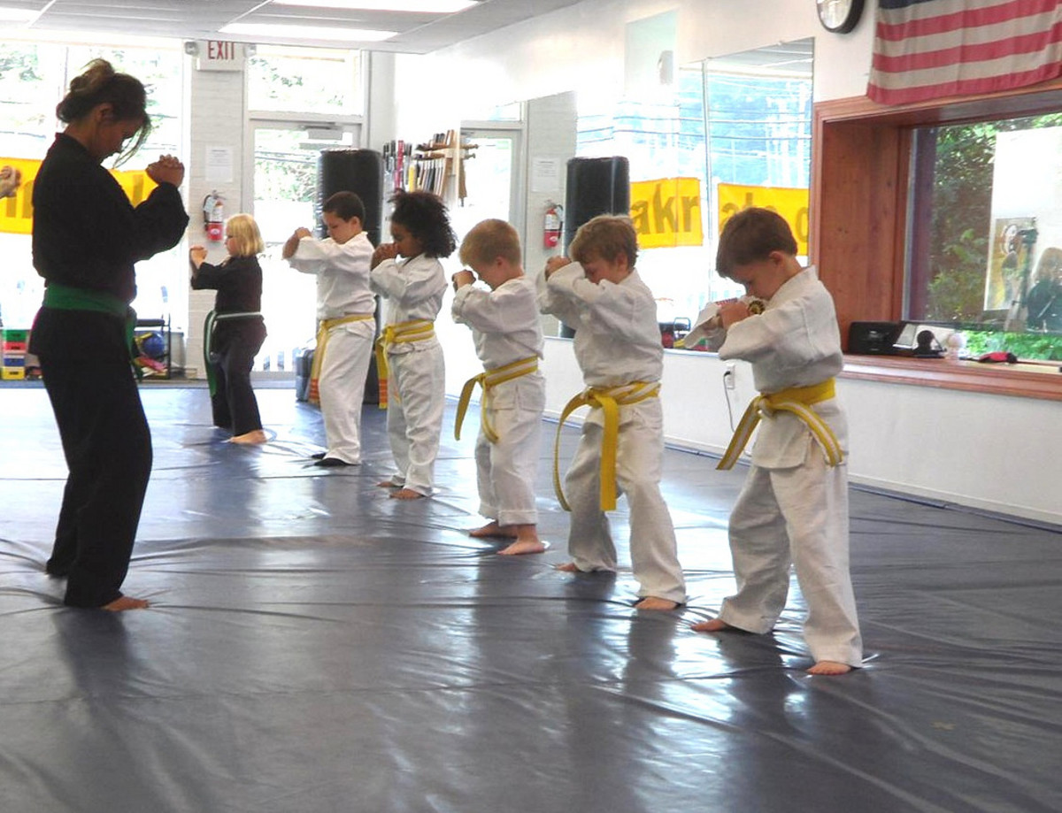 Martial arts is a good way to instill patience, respect, discipline and ethics in children.