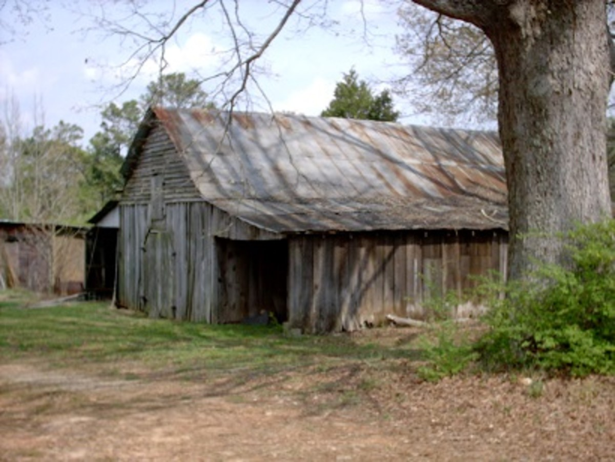 Old home place revisited...