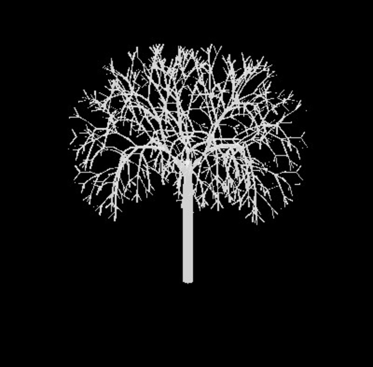 creating-a-family-tree