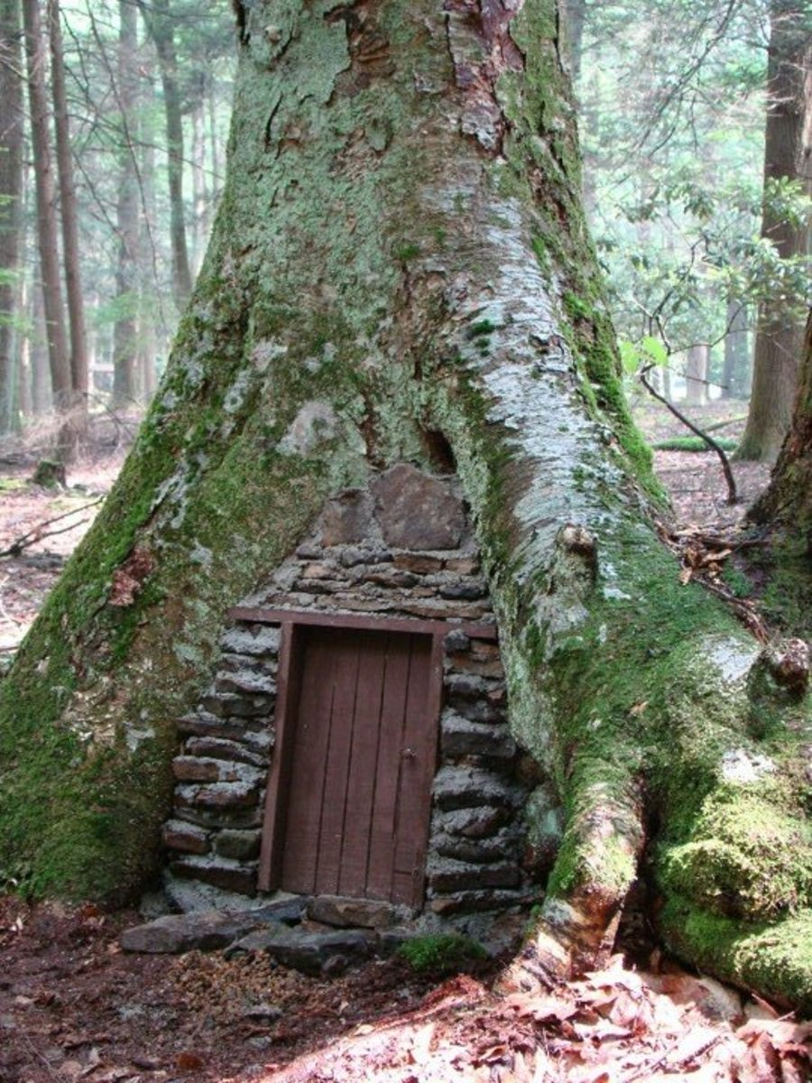 Fairy Door at Holly River State Park, West Virginia