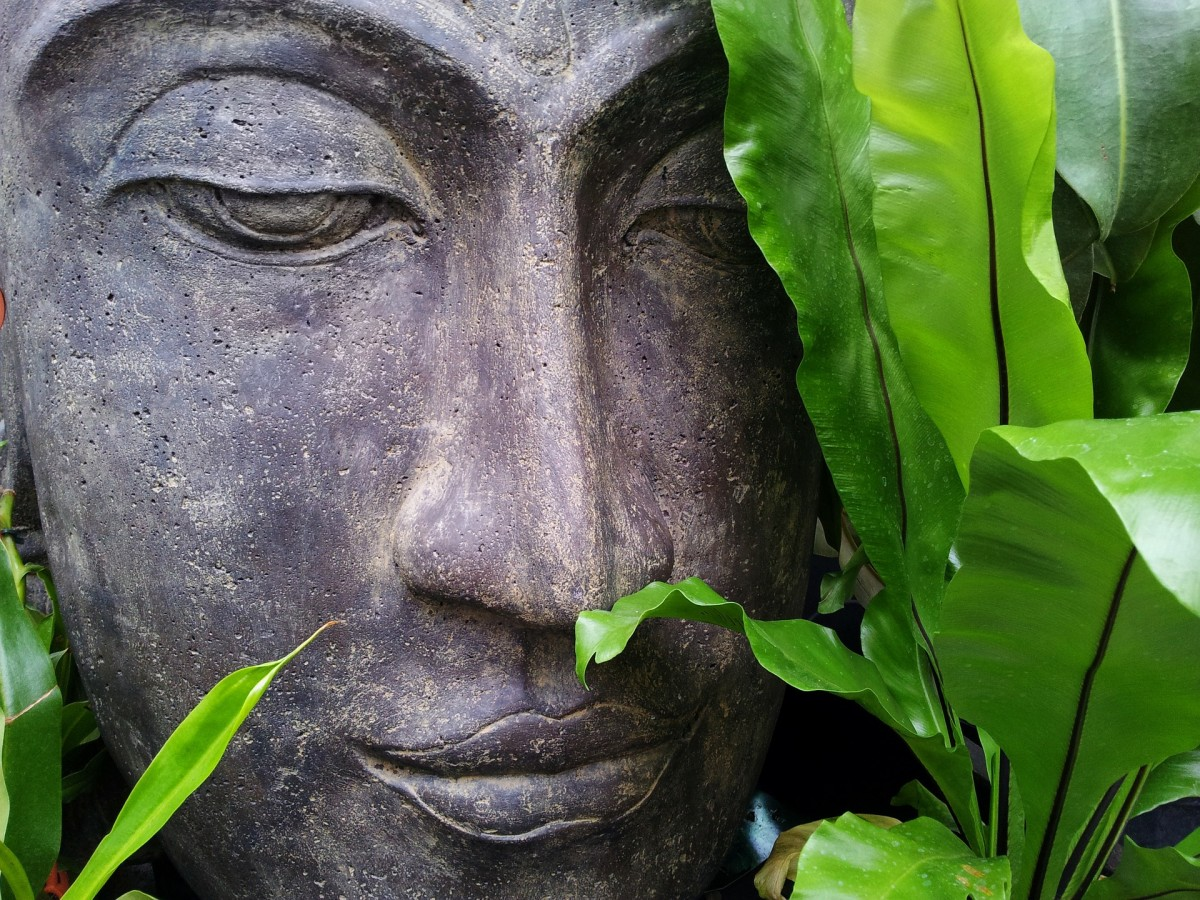 Words of Wisdom on Finding Inner Peace