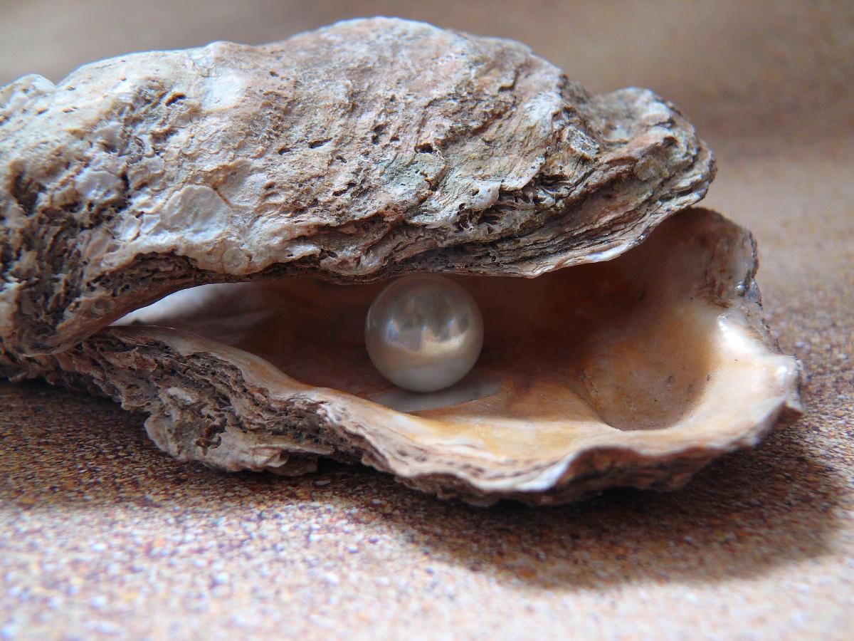 gita-my-little-pearl