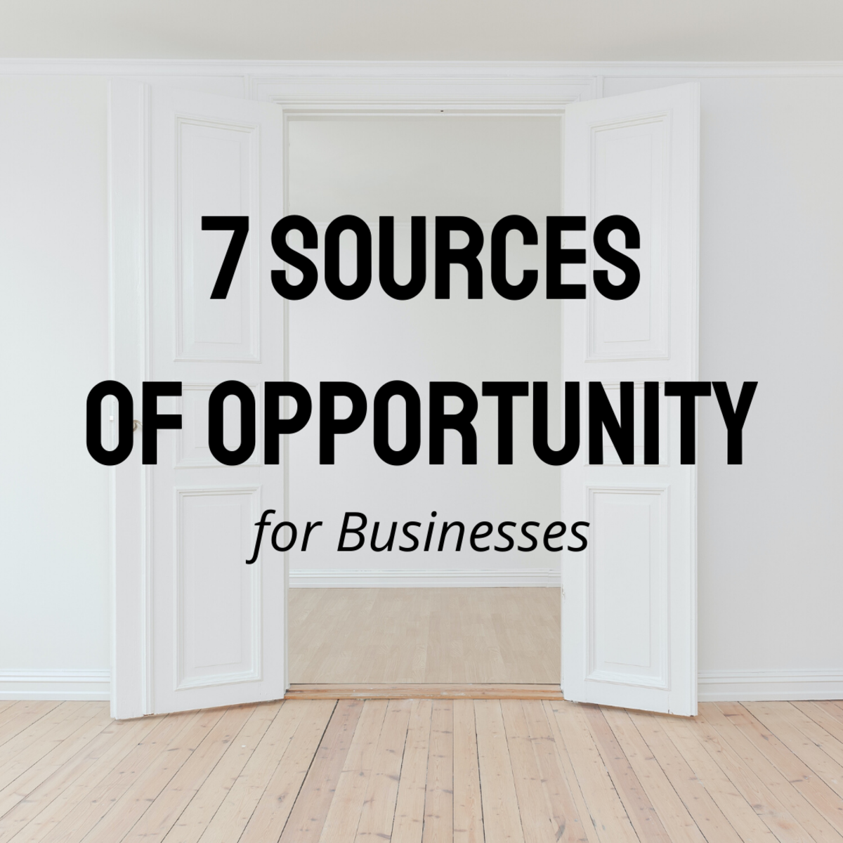 Discover the seven sources of opportunity as laid out by Peter Drucker. See how they might apply to your business.