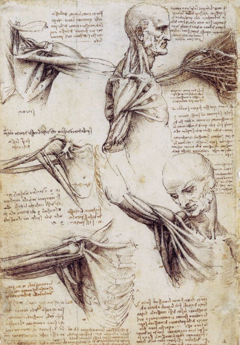 Rhizomatic Thinking and Leonardo Da Vinci