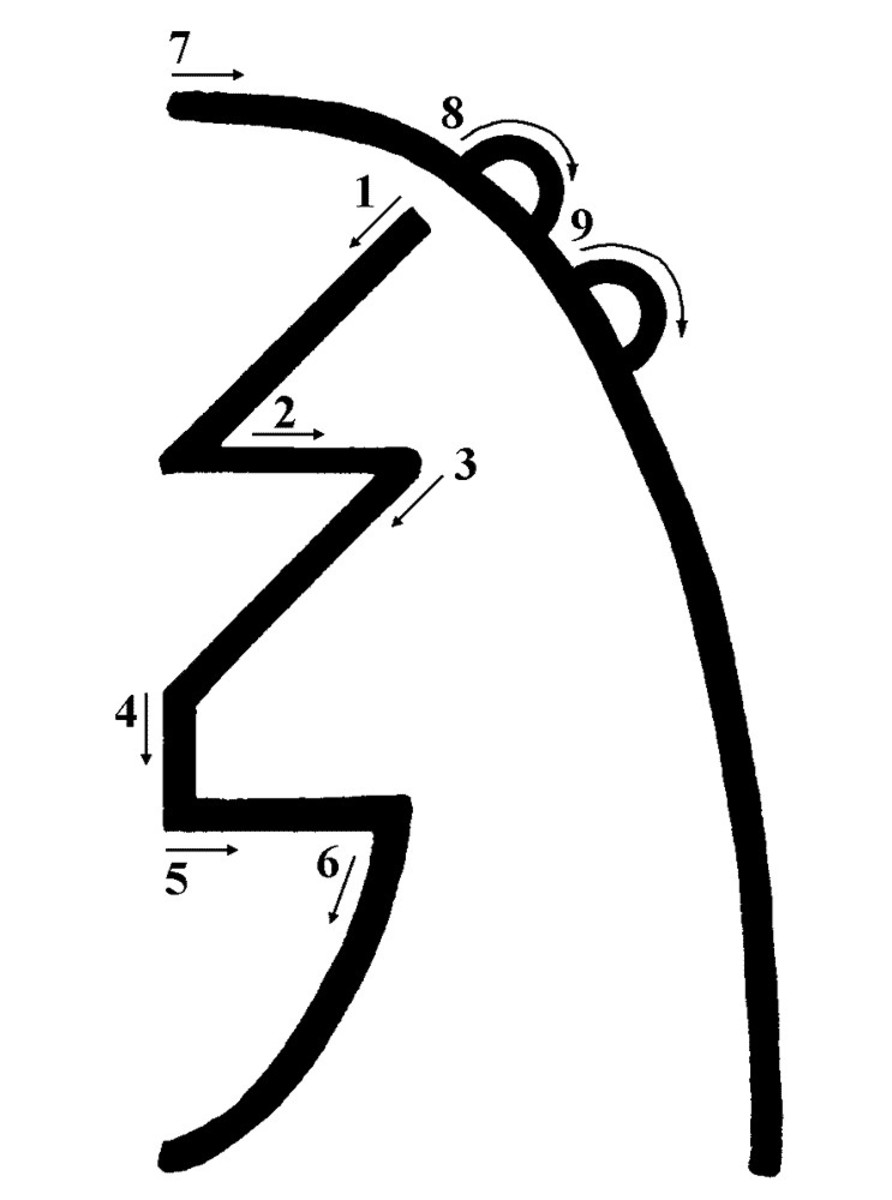 The Sei Hei Ki symbol, with arrows to show the drawing sequence.
