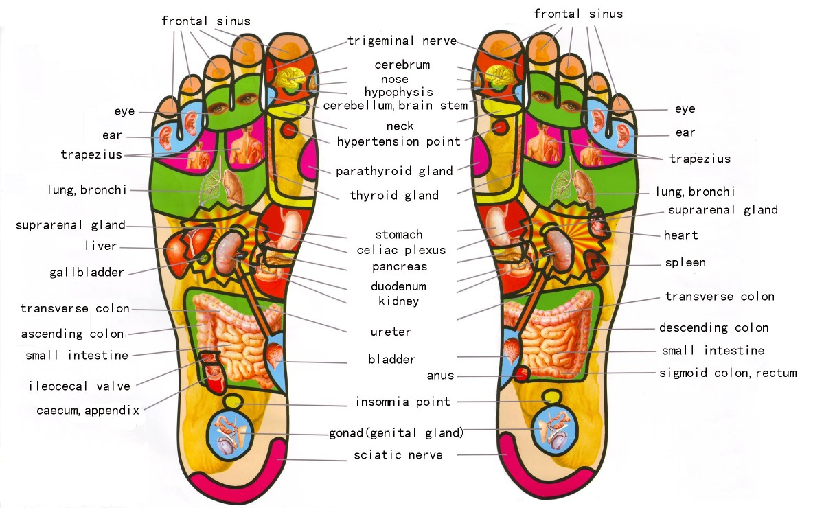 complimentary-asthma-therapies-reflexology