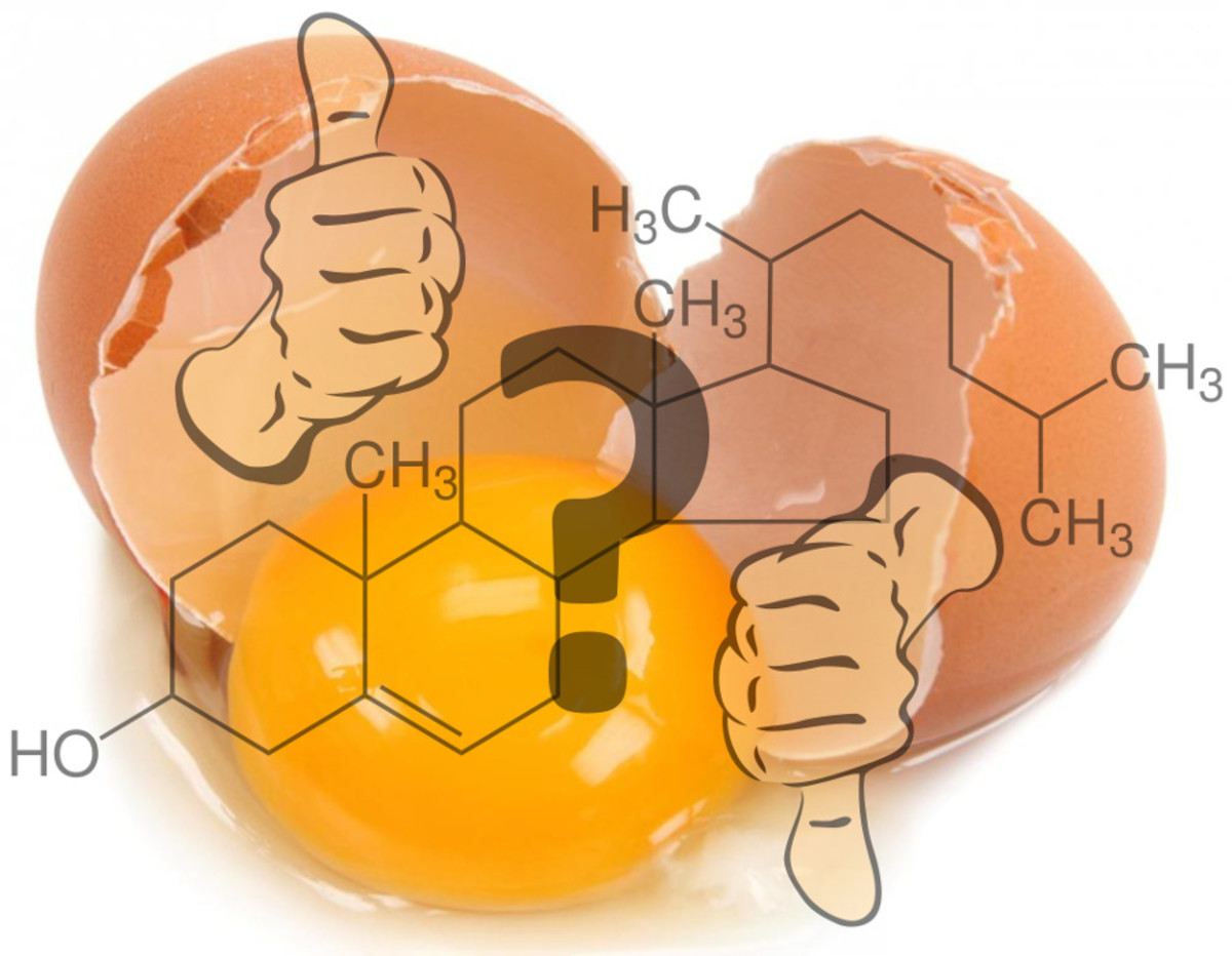 Questions About Egg Cholesterol Resolved By Modern Research
