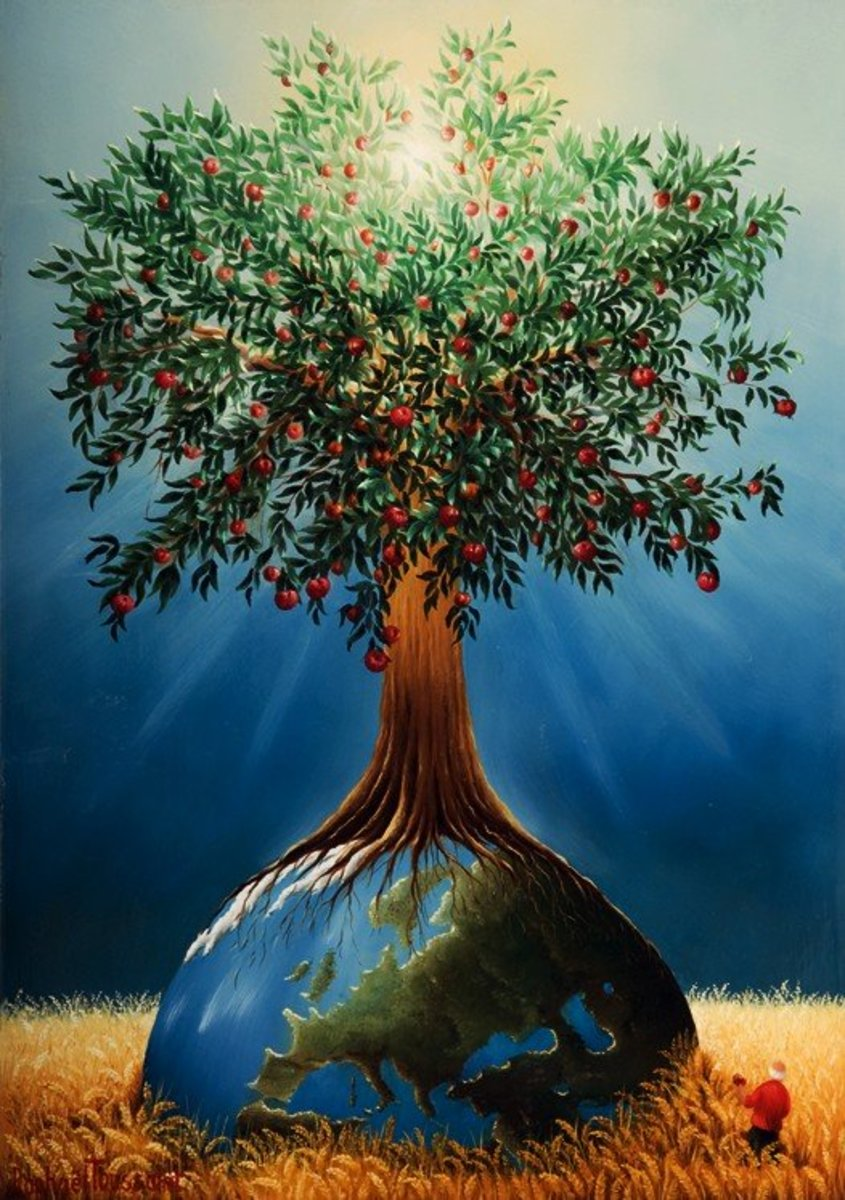 Proverbs And The Tree Of Life Owlcation