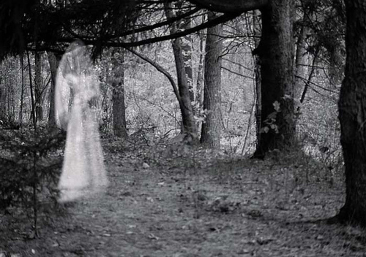 Investigative Attempts to Uncover Illusive British Ghosts