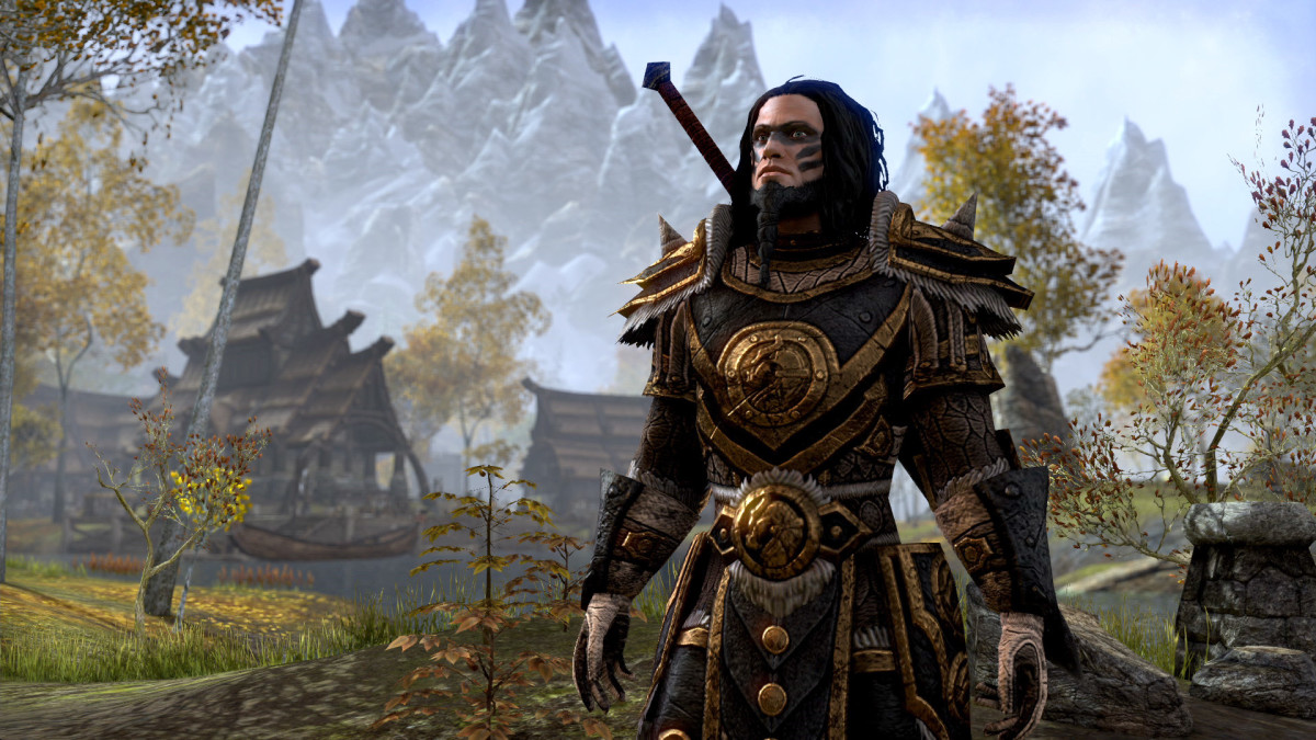 """The Elder Scrolls Online"": Beginner's Guide to Tanking ...