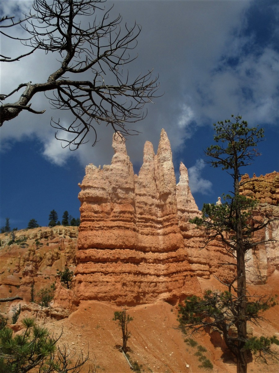 Bryce Canyon National Park in a Day