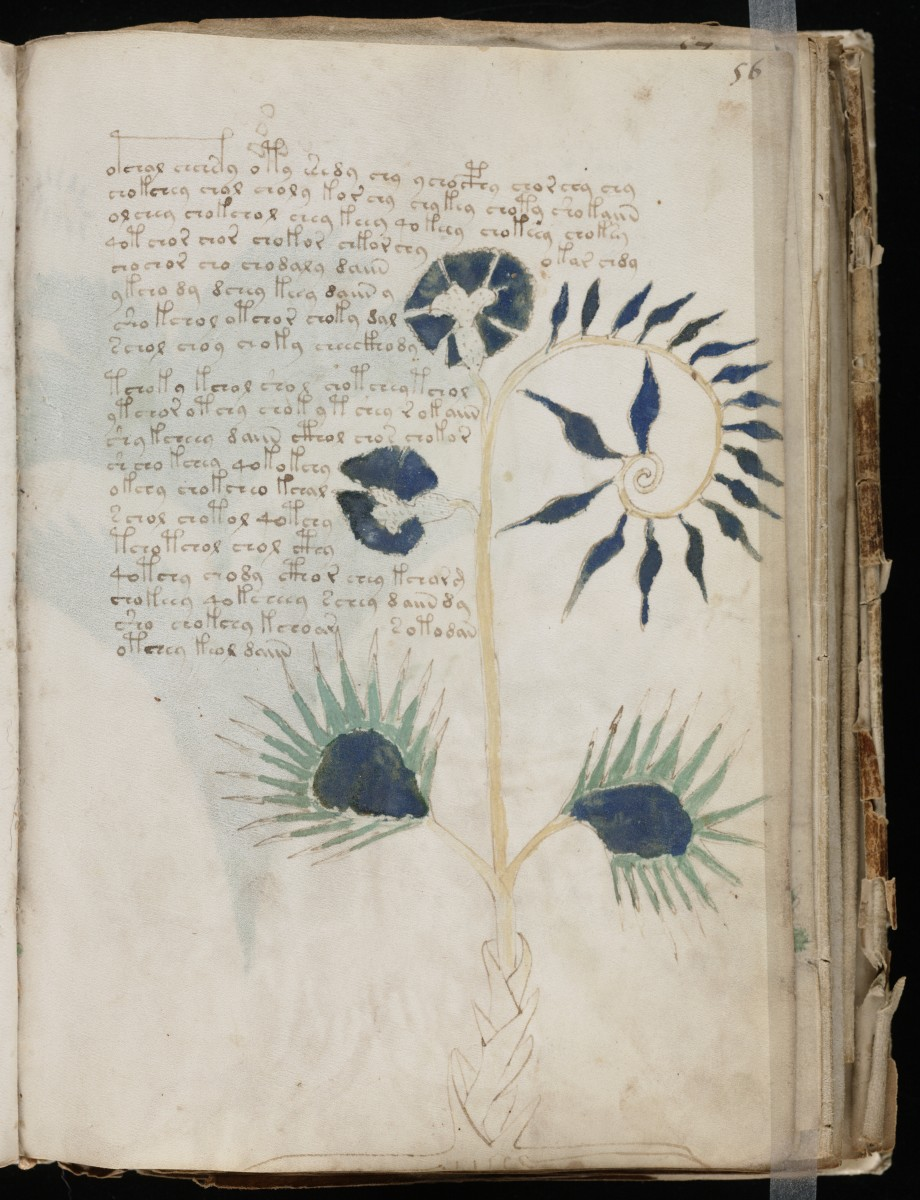The Riddle of the Voynich Manuscript