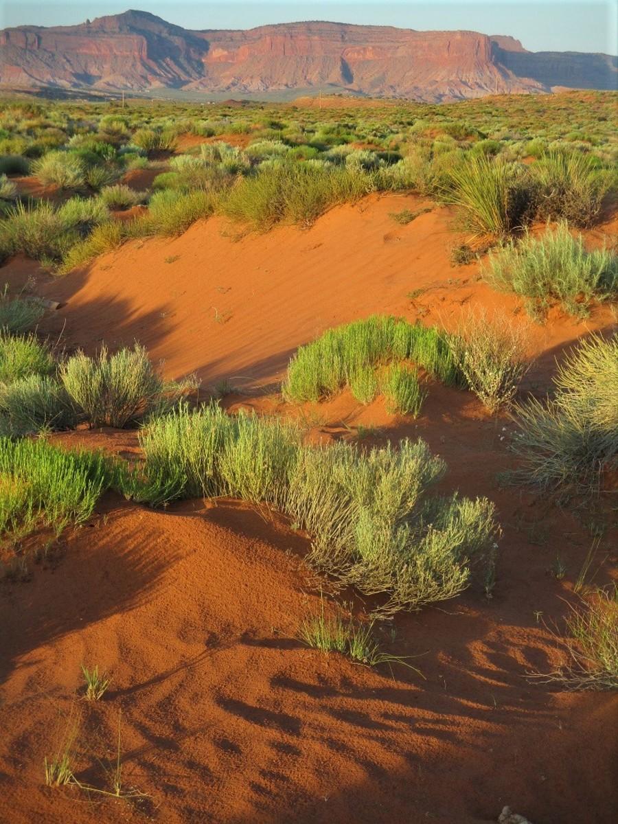Desert Hiking Advice
