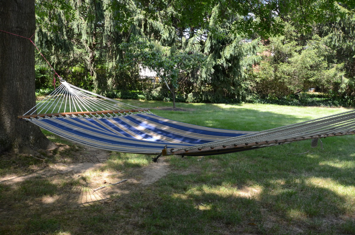A Quilted Hammock in the Shade