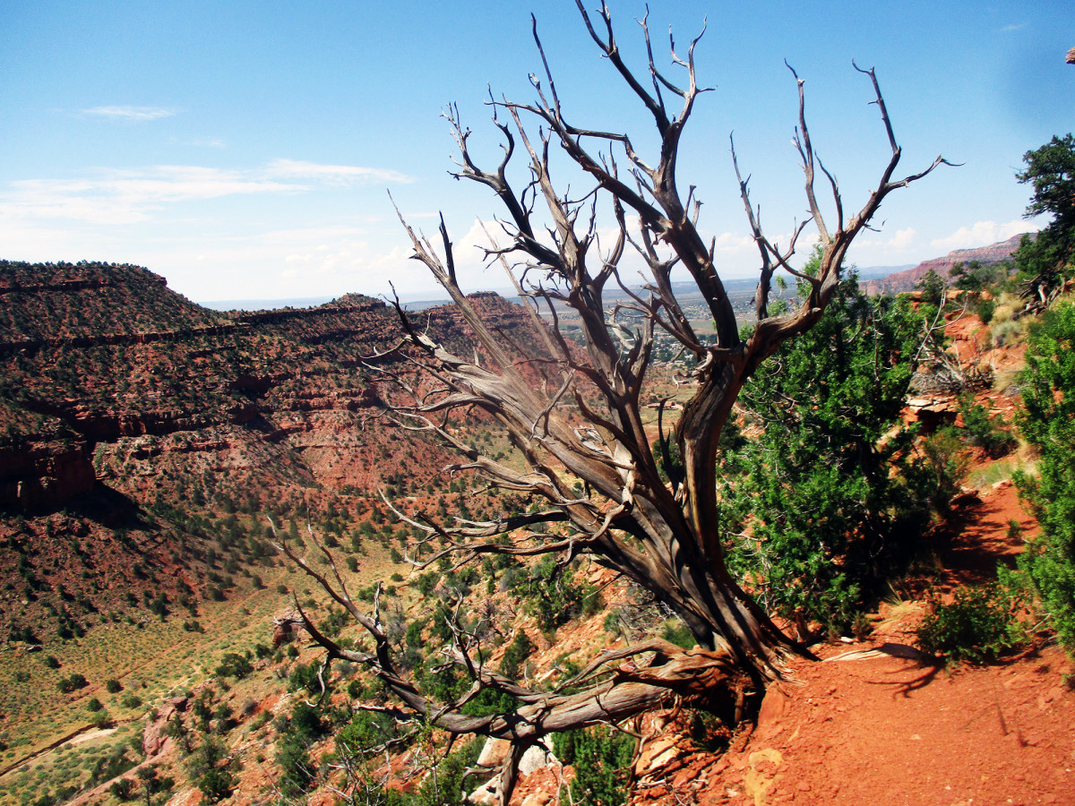 The hills surrounding Kanab, UT abound in beautiful scenery and challenging hiking trails, photo by author