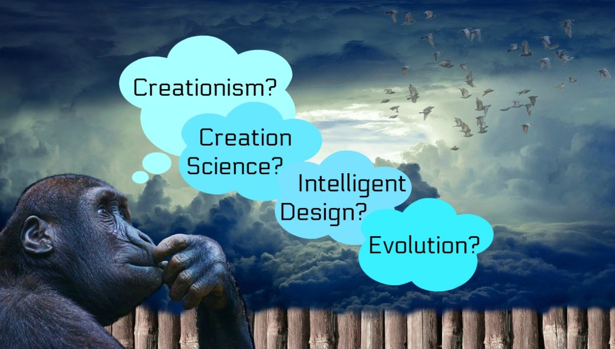 What Are the Differences Between Evolution and Creationism, Creation Science, and Intelligent Design?