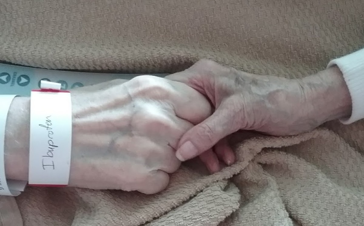 How to Care for the Elderly Without Losing Your Mind
