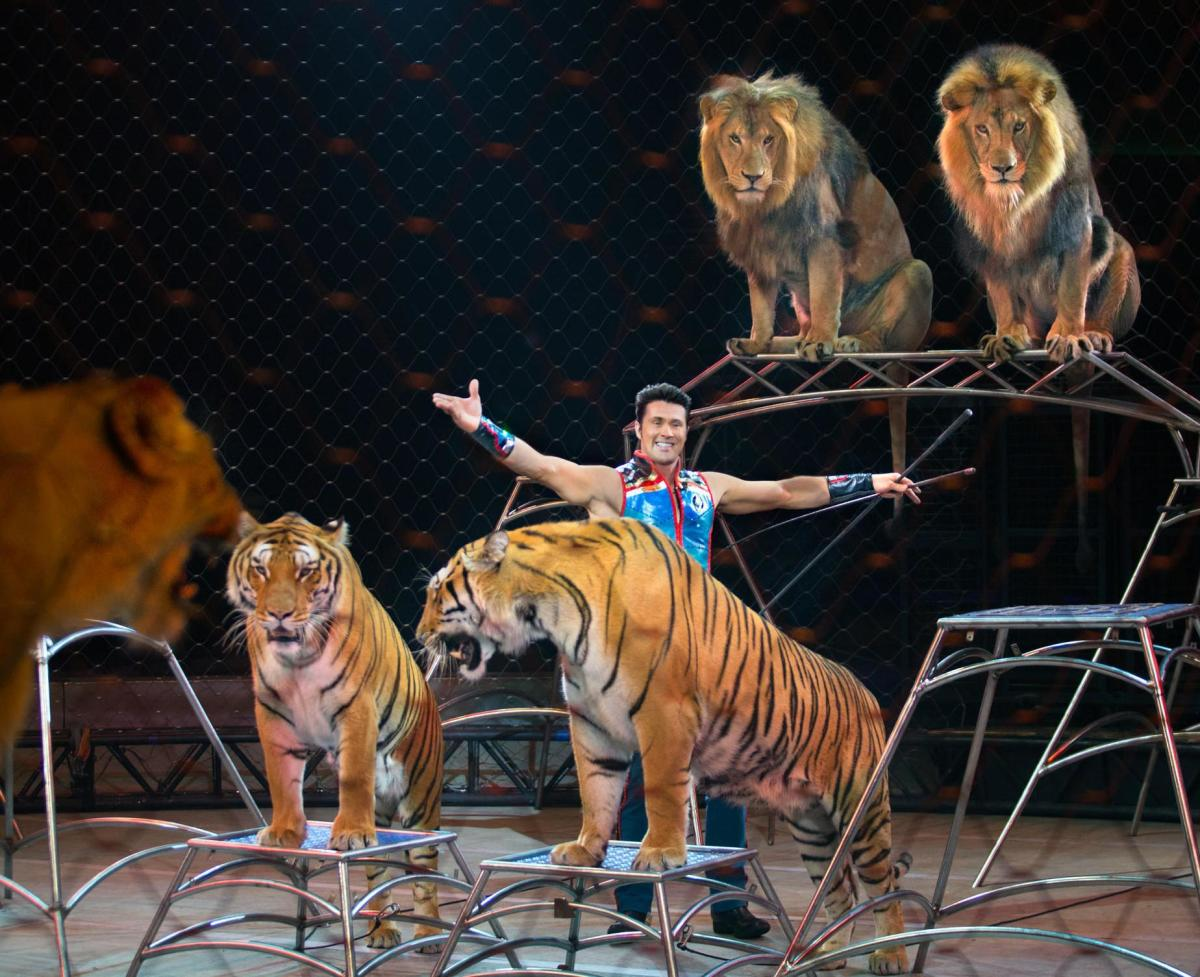 Big Cat & Animal Trainer Alexander Lacey's Ringling Bros. Circus Wrap-Up