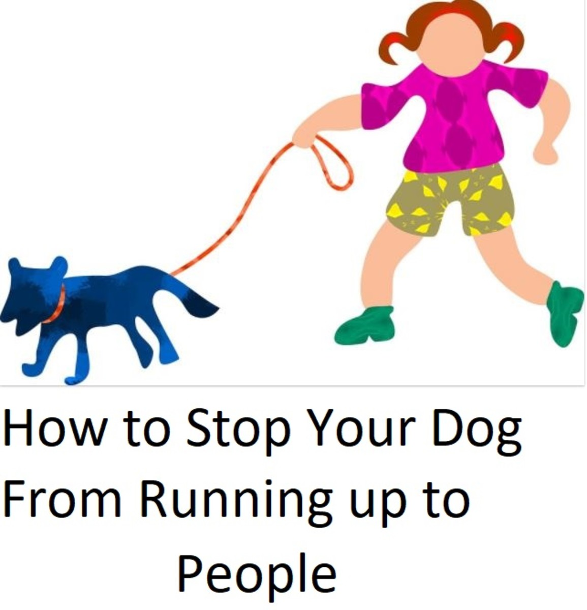 How Can I Stop My Dog From Approaching People?