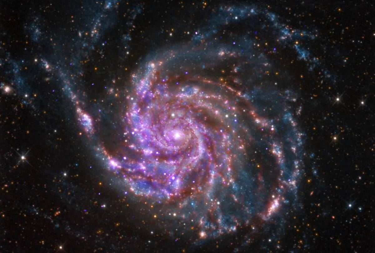M101, an example of a spiral galaxy. Notice the spiral arms extending from a dense centre.