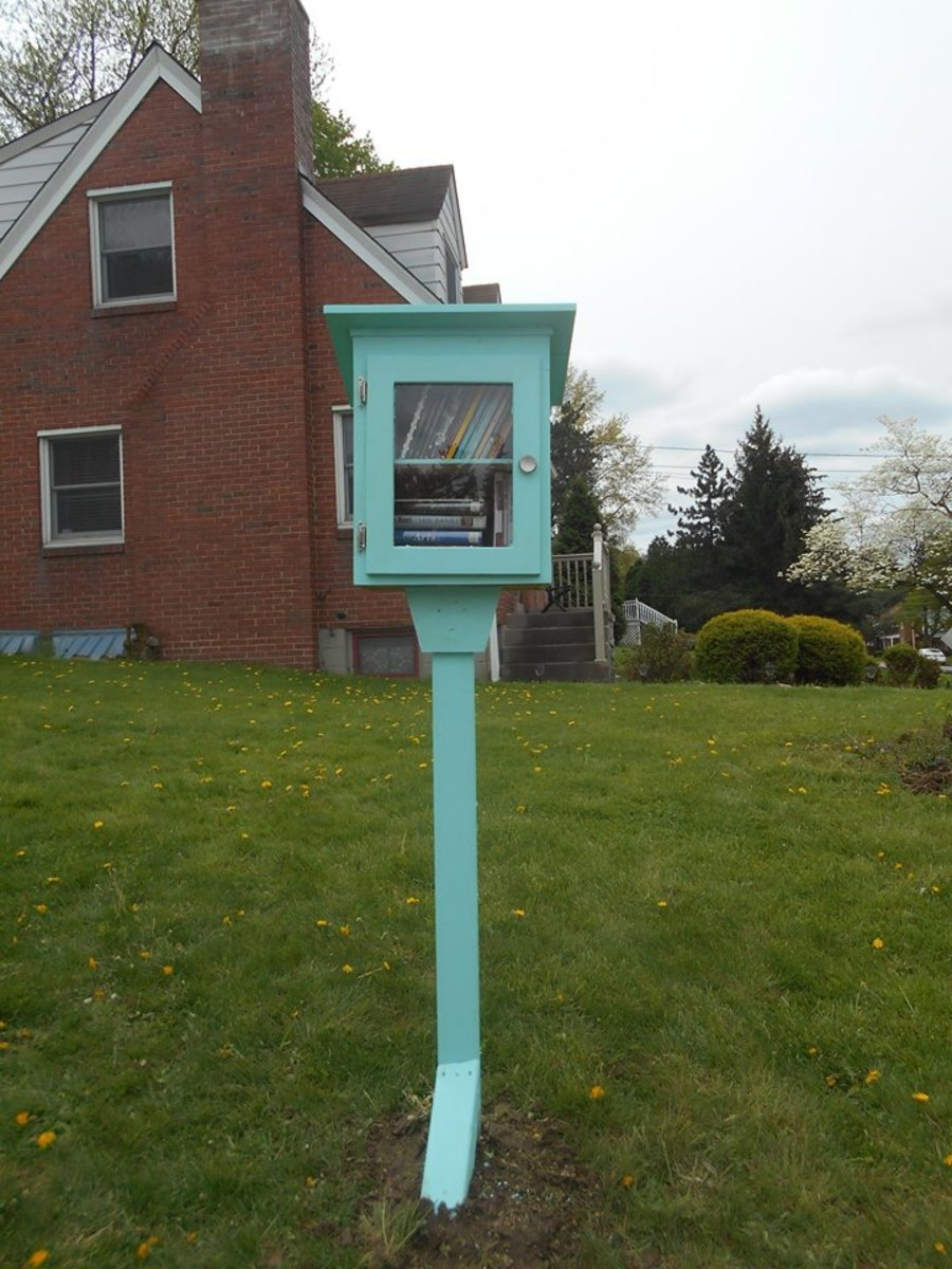 My Little Free Library