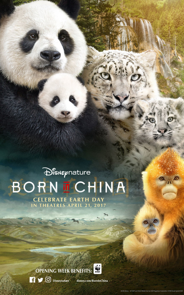 Born in China Review