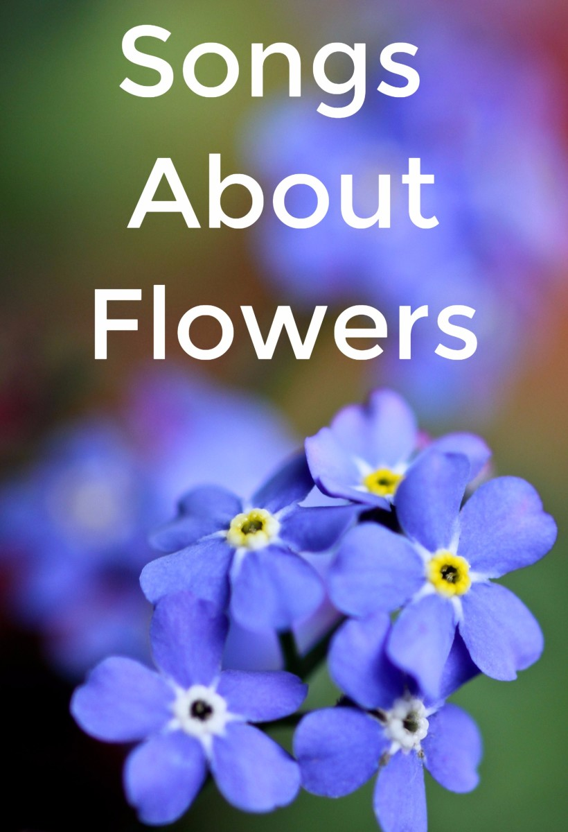 Celebrate the beauty of flowers and all of the shades of meaning that they represent.  Make a playlist of pop, rock, country, and R&B songs about roses, wildflowers, daisies, tulips, and other flowers.