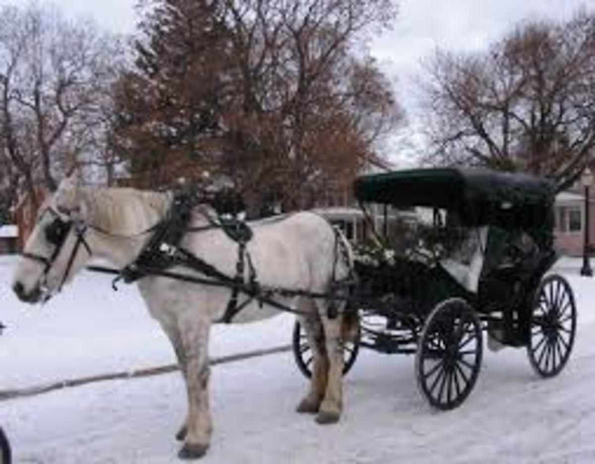 The Carriage Driver³ - The Legend